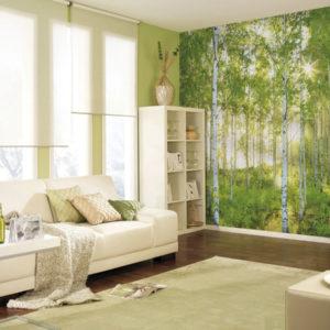 Fototapet Padure Copaci Soare 8-519 Interior