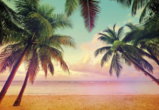 Fototapet Plaja 8-967