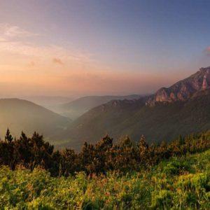 Fototapet Peisaj Montan Fox 01-0172