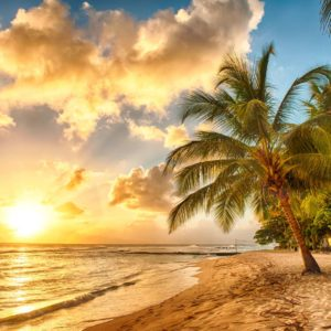 Fototapet Peisaj Tropical 27