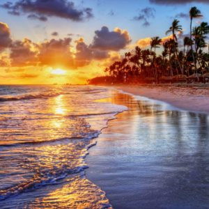 Fototapet Peisaj Tropical 31