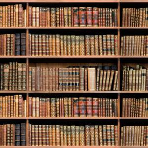 Fototapet Biblioteca Fox 20-0102