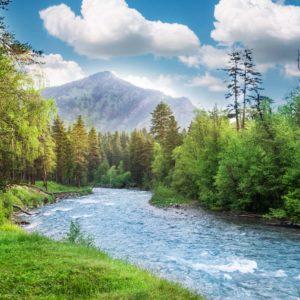 Lac -01-0131 Peisaj Montan Fox Fototapet