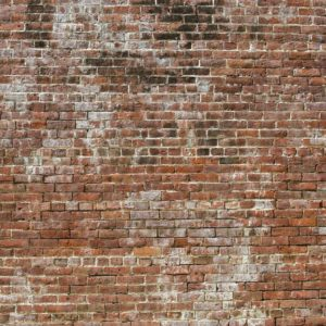 Fototapet perete din caramida Fox-21-0138 Textura
