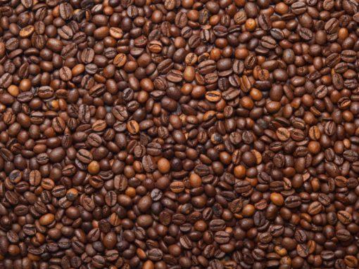 Fototapet Cafea Fox-25-0108