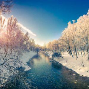 Fototapet 3D Râu Înghețat Iarnă Zăpadă Pădure Copaci