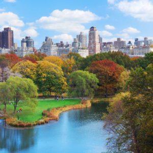 Fototapet New York Central Park 13
