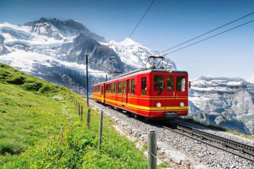 Fototapet Tren Montan 15