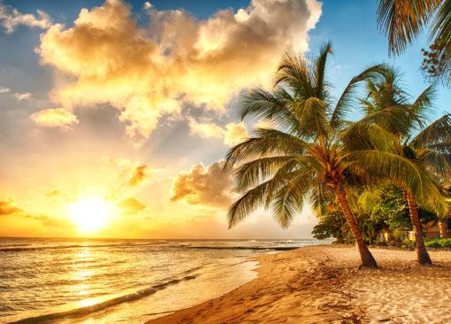 Fototapet 3D Plaja 18 Tropical Caraibe