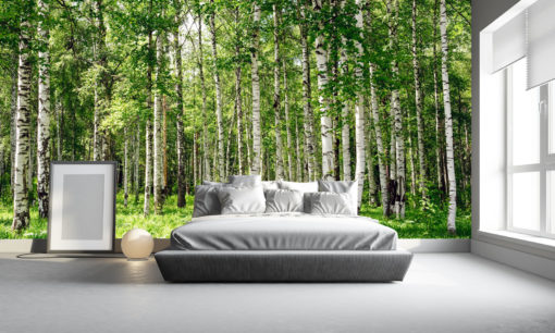 Tapet 3D Padure Mesteceni Fox-01-0309 - Imagine Interior Dormitor
