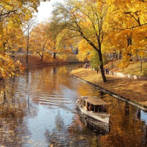 Parc 12 - Fototapet Toamna Lac Copaci