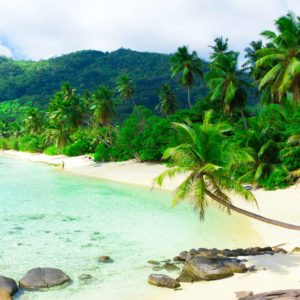 Peisaj Tropical 07 - Fototapet Plaja Palmieri