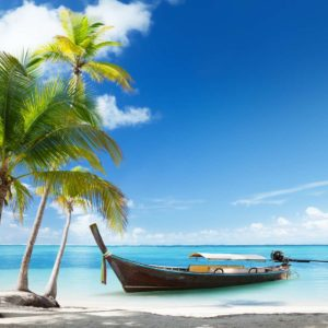 Peisaj Tropical - Fototapet 3D Palmieri Plaja Barca