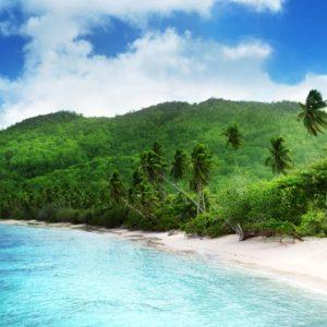 Peisaj Tropical 12 - Tapet 3D Plaja