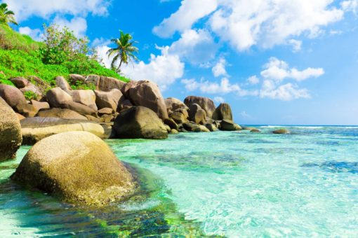 Peisaj Tropical 15 - Tapet Foto Plaja