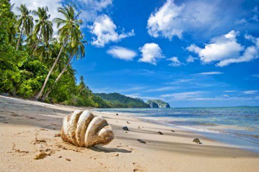 Peisaj Tropical 16 - Tapet Foto Plaja