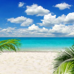 Peisaj Tropical 26 - Fototapet 3D Plaja Palmieri
