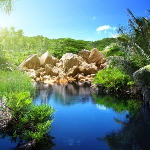 Peisaj Tropical 30 - Fototapet