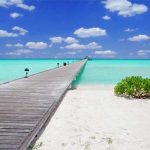 Fototapet 3D Ponton Peisaj Tropical