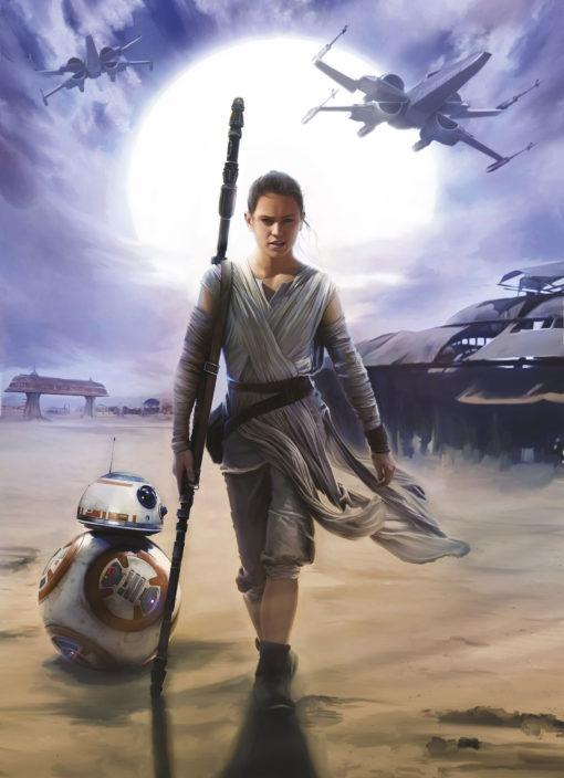 Fototapet Star Wars Rey 4-448
