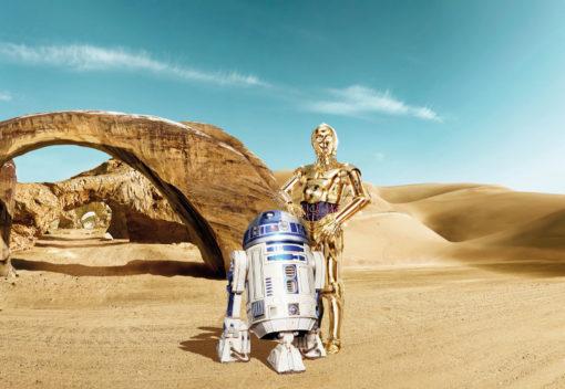 Fototapet Star Wars Lost Droids 8-484