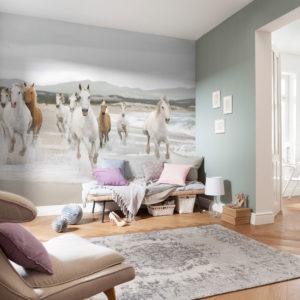 Fototapet White Horses 8-986