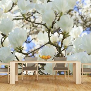 Tapet 3D Magnolie Alba - 01 - Simulare dimensiune mare