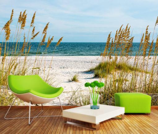 Fototapet Plaja, Peisaj Natura, Stuf, 3D. Simulare Camera Interior