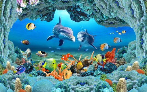 Fototapet Corali, Pesti si Delfini