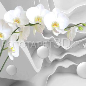 Fototapet Orhidee cu fundal abstract