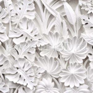 Fototapet Lumini si Umbre - frunze albe