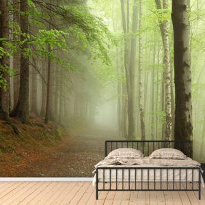 Fototapet Padure in ceata