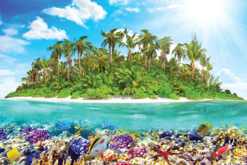 Tropical Acvatic - Fototapet Personalizat