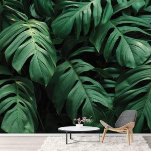 Foto tapet Frunze Tropicale