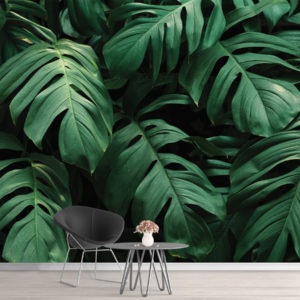 Tapet 3D Frunze Tropicale