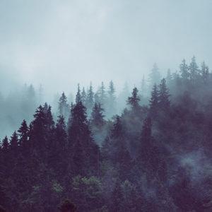 Muntele de ceata - Fototapet Personalizat