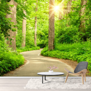 Fototapet Padure - Drumul dintre copaci